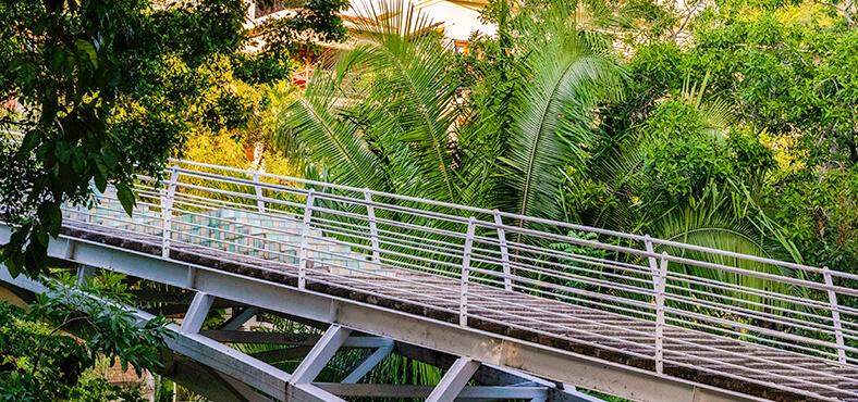 Puente Gringo Gulch